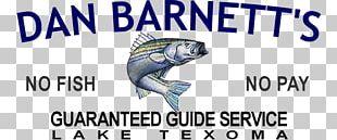 Striped Bass Fishing PNG