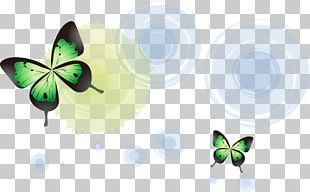 Butterfly Light Halo PNG