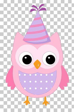 Little Owl Bird Drawing PNG