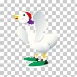 Duck Goose Cygnini Chicken Cartoon PNG