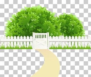 Clipping Path PNG
