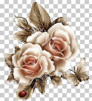 Butterfly Blue Rose Flower Garden Roses PNG
