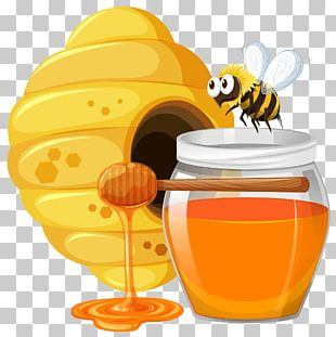 Beehive Honey Bee PNG