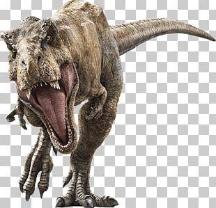 Tyrannosaurus Velociraptor Universal S Jurassic Park Baryonyx PNG