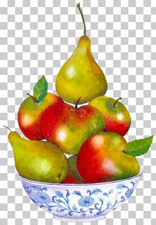 Apple Food Accessory Fruit Chinese White Pear Asian Pear PNG
