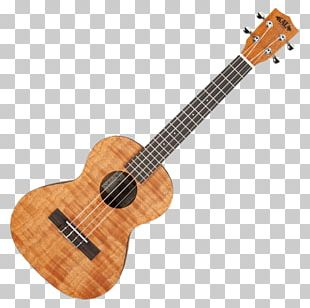 Ukulele Banjo Uke Guitar Oscar Schmidt Inc. PNG