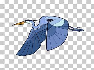 Heron Drawing Birds PNG
