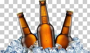 Ice Beer Beer Bottle PNG