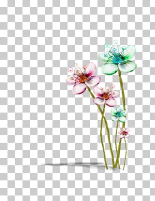 Moth Orchids Floral Design Cut Flowers Still Life Photography PNG