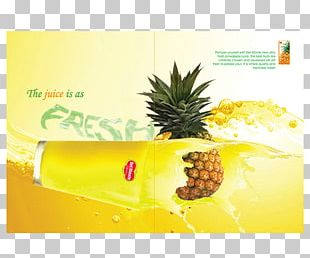 Pineapple Juice Carambola Food Fruit PNG