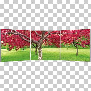 Triptych Art Panel Painting Photography Diptych PNG