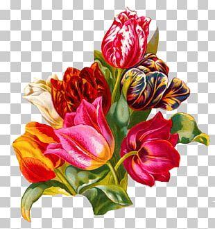 Flower Bouquet Tulip Floristry Cut Flowers PNG