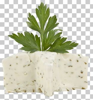 Cream Vanilla Herb Butter PNG