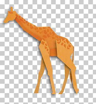 Northern Giraffe Origami Animal Illustration PNG