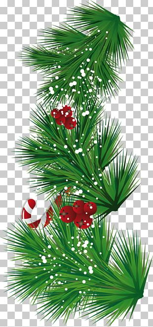 Candy Cane Santa Claus Christmas Tree PNG