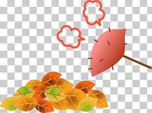 Roasted Sweet Potato Nagoya Specified Plumbing Shop Cooperatives Tsukimi Autumn PNG