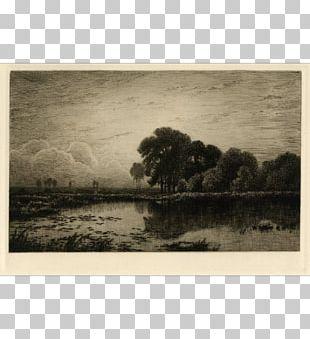 Bayou Paper Painting Wetland Frames PNG