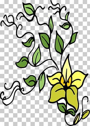 Plant Tree Flower Leaf PNG