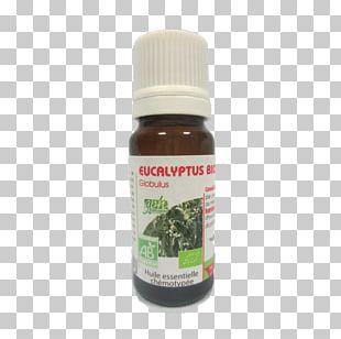 Eucalyptus Globulus Eucalyptus Radiata Eucalyptus Oil Essential Oil Breathing PNG