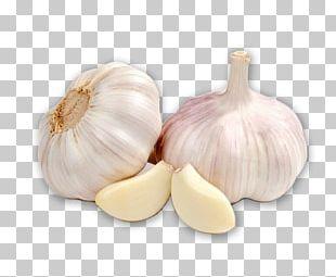 Garlic Organic Food Cooking Vegetable Herb PNG