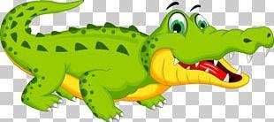 Crocodile Cartoon Stock Photography PNG