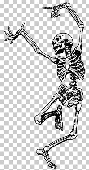 Human Skeleton Dance Skull PNG