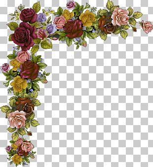 Garden Roses Paper Floral Design Flower Bokmärke PNG