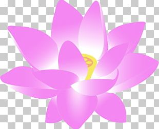 Old Fashioned Flowers Pink Flowers PNG