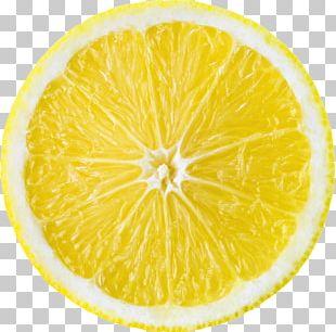 Lemon Juice Fruit Slice Orange PNG
