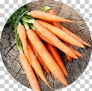 Organic Food Diet Nutrition Health Food PNG