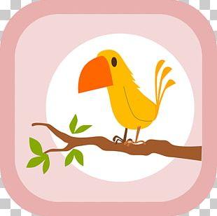 Toucan Parrot Bird Paper Post Cards PNG