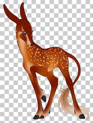 Reindeer Horse Antelope Pack Animal PNG