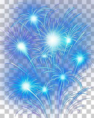 Fireworks Sky Purple PNG
