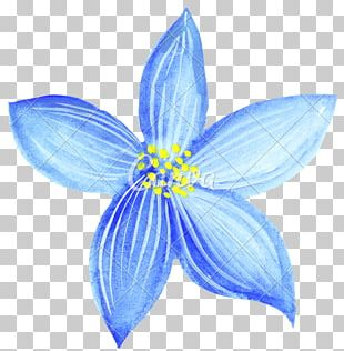 Love Drawing Watercolor Painting Blue Flower PNG