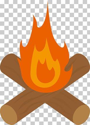 Bonfire Firewood PNG