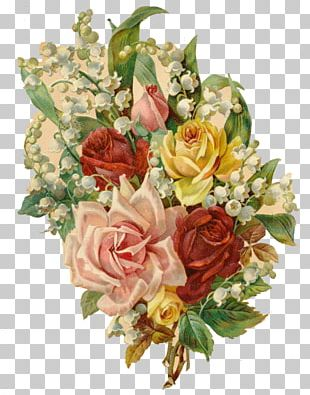 Garden Roses Floral Design Cut Flowers Beach Rose PNG