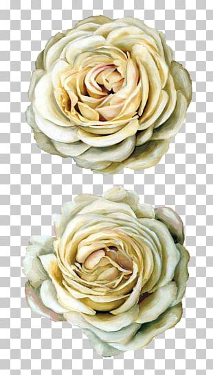 Flower Floral Design Painting Drawing PNG