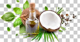 Coconut Oil Cooking Oils Coconut Milk PNG