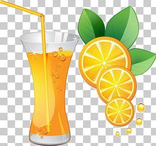 Orange Juice Cocktail Orange Drink PNG