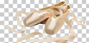 Ballet Shoe Pointe Shoe Ballet Flat Ballet Dancer PNG