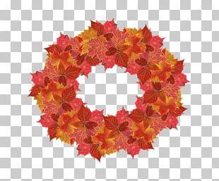 Floral Design Maple Leaf Wreath Petal PNG