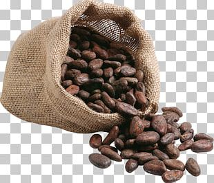 Coffee Bean Cafe Kopi Luwak Espresso PNG