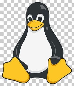 Tux Racer Red Hat Enterprise Linux PNG