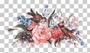 Bird Flower Stock Illustration Illustration PNG