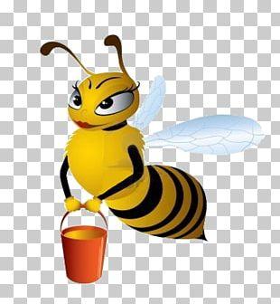 maya the bee cartoon free download