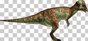Tyrannosaurus Jurassic Park: Operation Genesis Pachycephalosaurus Metriacanthosaurus Edmontosaurus PNG