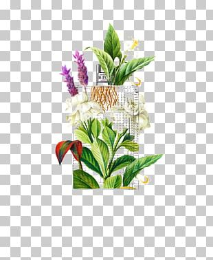 Drawing Watercolor Painting Art Illustration PNG