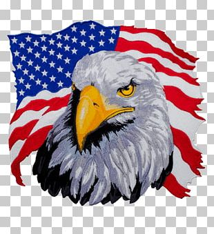 United States T-shirt Bald Eagle Hoodie PNG