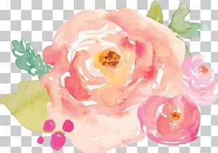 Watercolour Flowers Logo Watercolor Painting Photography PNG