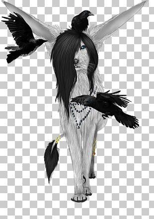 Costume Design Bird Of Prey Beak PNG